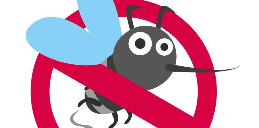 zikavirus
